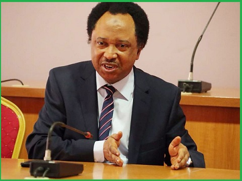 N-Power: Volunteers Should be Given Permanent Appointment-Senator Shehu Sani 39